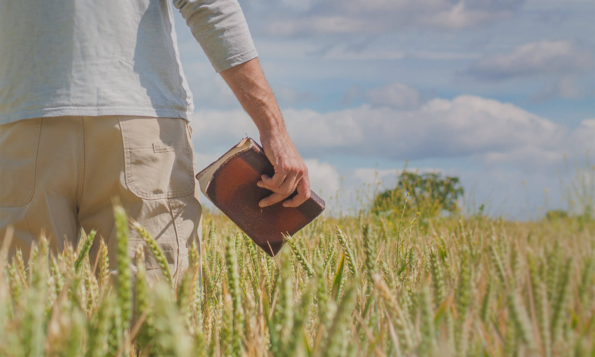 carrying-bible-in-field
